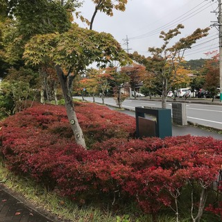 2017-10-7-2.jpg